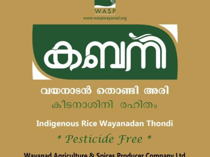 Pesticide free Kabani rice from wasp Wayanad